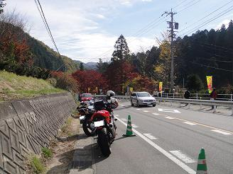 010 - コピー.JPG