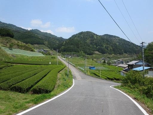 IMG_2771 - コピー.JPG